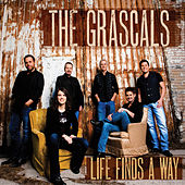 Life Finds A Way de The Grascals