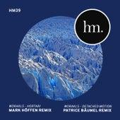Hortari & Detached Motion Remixes von Worakls