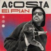 El Plan de Acosta