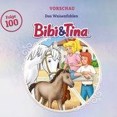 Vorschau - Folge 100: Das Waisenfohlen von Bibi & Tina