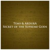 Secret of the Supreme Gods de Tems