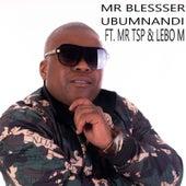Ubumnandi by Mr Blesser