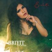 Bichota (Cover) de Briyit y Su Banda