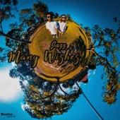 Many Wishes by Jazz