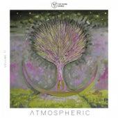 Voltaire Music Pres. Atmospheric, Vol. 12 von Various Artists