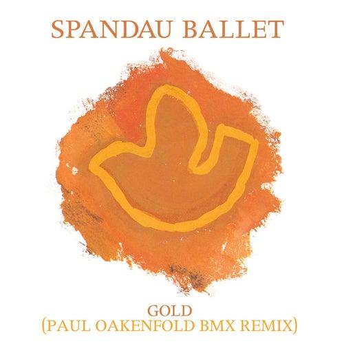 Gold (Paul Oakenfold BMX Remix) by Spandau Ballet