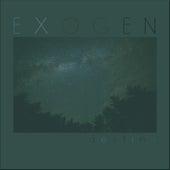 Destiny (Single) by Exogen