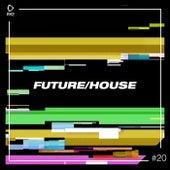 Future/House #20 von Various Artists