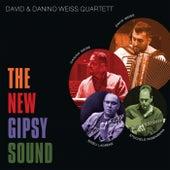 The New Gipsy Sound von David & Steve Gordon's Inner Change Discoveries