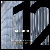 The Selador Showcase - The Twelfth Night, Pt.1 von Various Artists