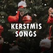 Kerstmis Songs de Various Artists
