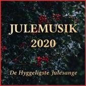 Julemusik 2020 - De Hyggeligste Julesange fra Various Artists