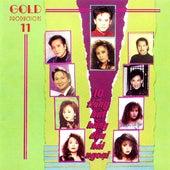 10 Tieng Hat Hang Dau Hai Ngoai de Various Artists