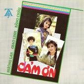 Cam On de Various Artists