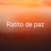 Ratito de Paz de Various Artists