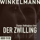 Der Zwilling (Kurzgeschichte) by Andreas Winkelmann