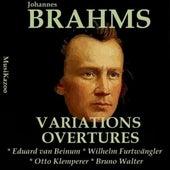 Brahms, Vol. 8 : Variations & Overtures by Various Artists