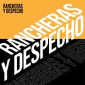 Rancheras y Despecho by Various Artists