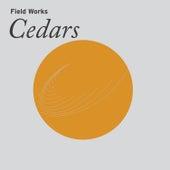 La'āli' / The sharp smell of cedar by Field Works