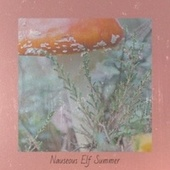 Nauseous Elf Summer de Elisabeth Schmann, Tommy Hunter, The Tune Weavers, Boston Pops Orchestra, Brenda Lee, The Hi Tones, Sammy Marshall, Andre Kostelanetz