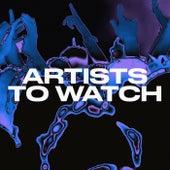 Artists to Watch de Various Artists