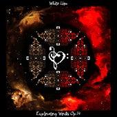 Exploratory Works Op.14 de White Lion