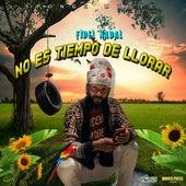 No Es Tiempo De Llorar by Fidel Nadal