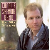 In My View by Charlie Sizemore