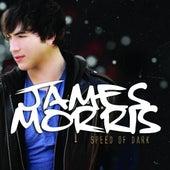 Speed Of Dark by James Morris