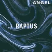 Raptus de Angel