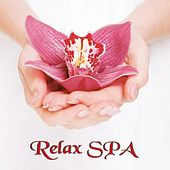 Relax Spa (Relaxing Music for Meditation, Yoga, Massage, Relaxation, Ayurveda) by Various Artists