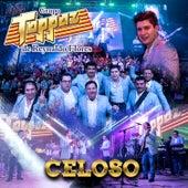 Celoso (En Vivo) by Grupo Toppaz de Reynaldo Flores