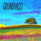 Wenig Los de Grundhass