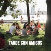 Tarde Con Amigos de Various Artists