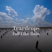 Teardrops Fall Like Rain by Various Artists