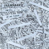 2020's Over Covers by Grandaddy