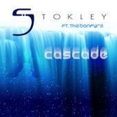 Cascade de Stokley