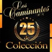 25 de Colección de Los Caminantes