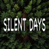 Silent Days von Nature Sounds (1)