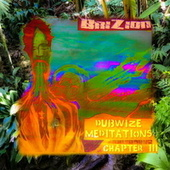 Dubwize Meditations Chapter 3 von Brizion