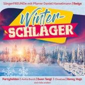Winter-Schlager von Various Artists