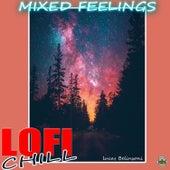 Mixed feelings Lofi Chill von Lucas Belinsoni