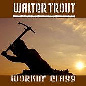 Workin' Class by Walter Trout