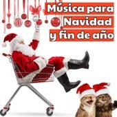 Música para Navidad y fin de año von Various Artists