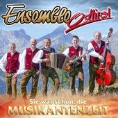 Sie war schön, die Musikantenzeit van Ensemble Osttirol
