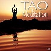 Tao Meditation de Tao Meditation