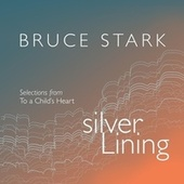 Silver Lining by Bruce Stark