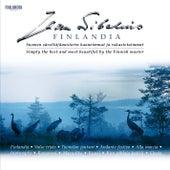 Sibelius Finlandia von Various Artists