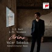 Bach & Telemann: Arias von Valer Sabadus