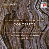 Concerto for Two Violas and Orchestra in C Major/II. Romance by Reinhard Goebel